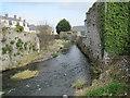 S5056 : River next to Black Mill Street, Kilkenny by Nigel Thompson