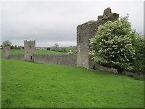 S4943 : Kells Priory, County Kilkenny by Nigel Thompson