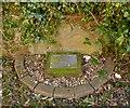 NS3975 : Gravestone of William McAlla by Lairich Rig