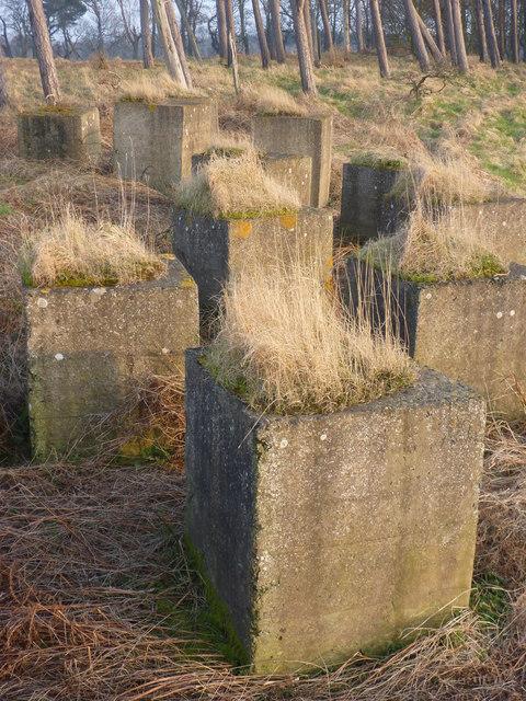 Rural East Lothian : WW2 Anti-tank Blocks at Hedderwick