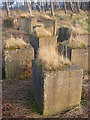 NT6378 : Rural East Lothian : WW2 Anti-tank Blocks at Hedderwick by Richard West