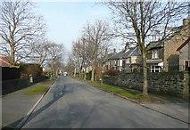 SE1421 : Woodhouse Lane by Humphrey Bolton
