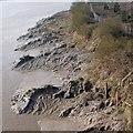 ST3286 : Muddy magnificence, River Usk, Newport by Robin Drayton