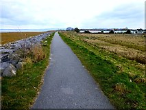 SD3648 : Lancashire Coastal Way Leaving Knott End by Rude Health