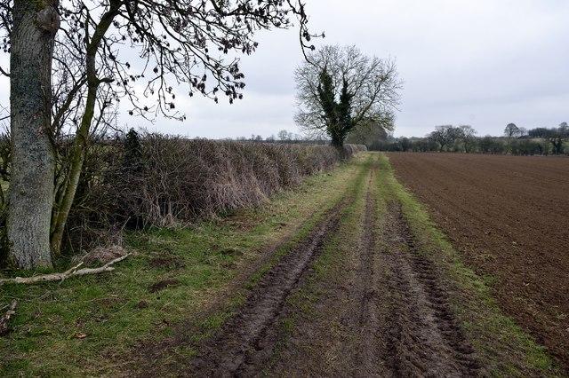 Footpath north of Rowler