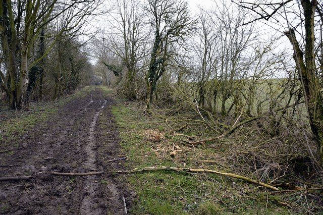 Footpath north of Rowler