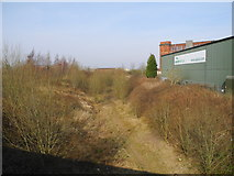 SJ9297 : Old railway trackbed, Audenshaw by John Topping