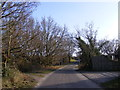 TM4468 : Baker's Lane, Westleton by Adrian Cable
