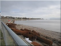 NO4531 : Rebar, Broughty Ferry by Richard Webb