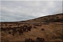 NR3268 : Loch a' Chnuic Bhric, Islay by Becky Williamson