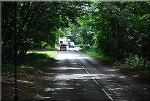 TG1607 : B1108, Watton Rd by N Chadwick