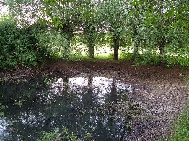 Pond in Solomon's Hollow