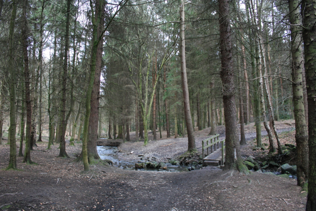 Spring Wood, Guiseley