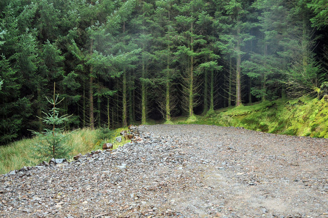 End of the forestry road near Killellan