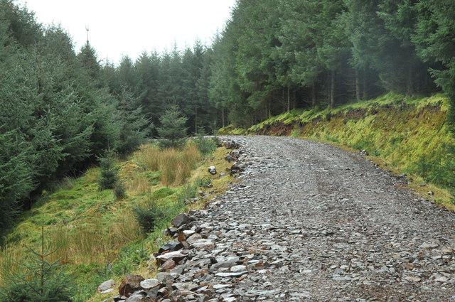 Forestry road near Killellan