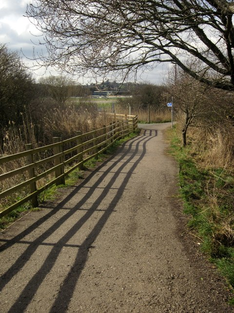 Fence by cyclepath, Hackney Marshes