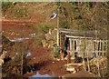 SX8866 : Timber yard, Edginswell by Derek Harper