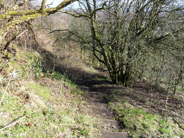 Footpath, near Pighill Wood, Outlane