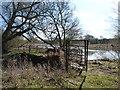 SK3927 : Footbridge between Black Pool and canal basin by Richard Green