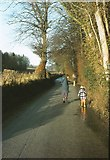 SJ3654 : Hoseley Lane, Gresford, 1983 by Derek Harper
