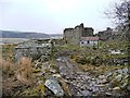 SD7793 : Ruins alongside Rowantree Gill by Christine Johnstone