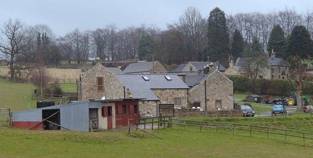 Hazel Farm