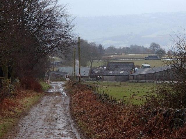 Back Lane above Woodside Farm