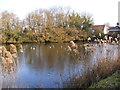 TM5099 : Lound Village Pond by Geographer