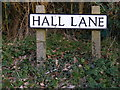 TM5197 : Hall Lane sign by Adrian Cable