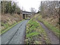 NZ2142 : Bridge over the Deerness Valley Railway Path by Oliver Dixon