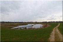 SE6350 : New lake on Heslington East by DS Pugh