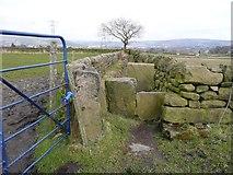 SE0721 : Enclosed section of Elland Footpath 41 by Humphrey Bolton