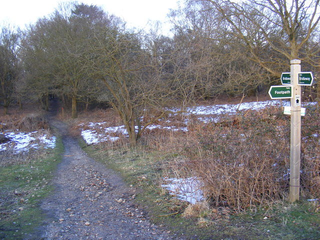 Bridleway to Minsmere Road