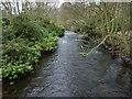 NO2701 : River Leven by James Allan