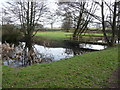 SO3915 : Hen Gwrt moated site at Llantilio Crossenny, Monmouthshire by Jeremy Bolwell