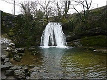 SD9163 : Janet's Foss by Anthony Parkes