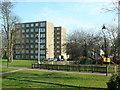 TQ3074 : Rush Common by Nigel Mykura