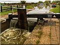 SP4560 : Napton Bottom Lock No 8 by Gillie Rhodes