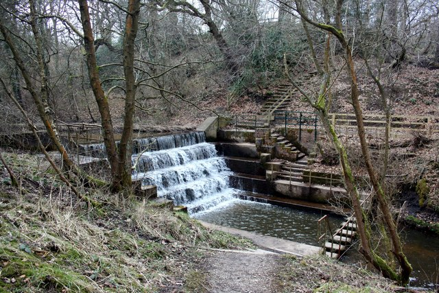 Weir in Deep Hayes Country Park