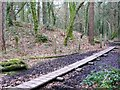 SW6032 : Board walk and fenced copper mine shaft, Godolphin Estate by Humphrey Bolton
