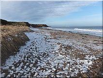 NU0052 : Snow on the beach by Barbara Carr