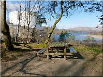 NS3882 : Picnic bench in Drumkinnon Wood by Lairich Rig