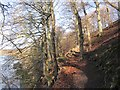NT9047 : Path beside the Tweed by Richard Webb