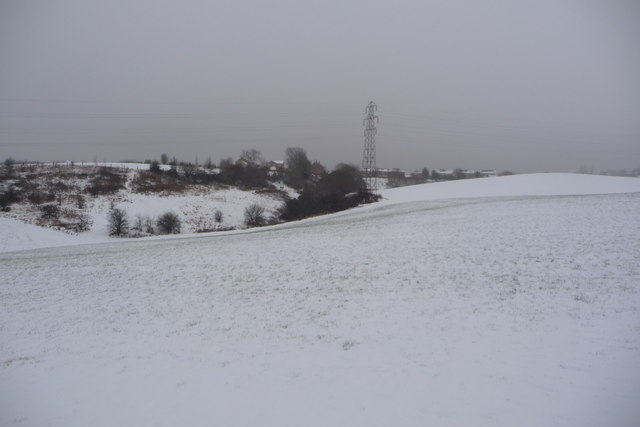 Snowy Daisy Hill