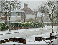 SO9096 : More late snow in Penn, Wolverhampton by Roger  Kidd
