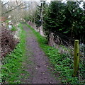SU0097 : Thames Path near Ewen by Jaggery