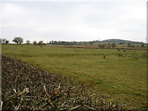 NY1125 : Fields opposite Aikbank Mill by David Purchase