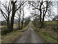 NY4226 : The lane from Hutton by David Purchase