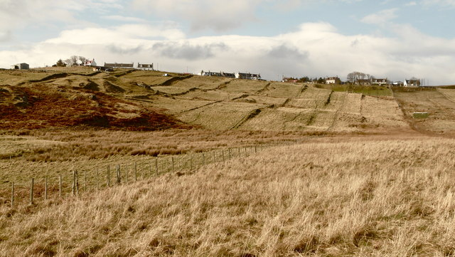Croft strips at Melness near Tongue