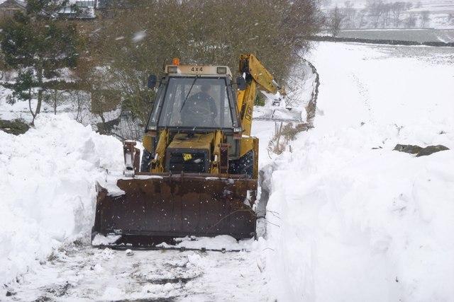 Clearing Tewitt Lane